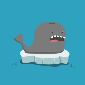Cute Whale Cartoon Pun